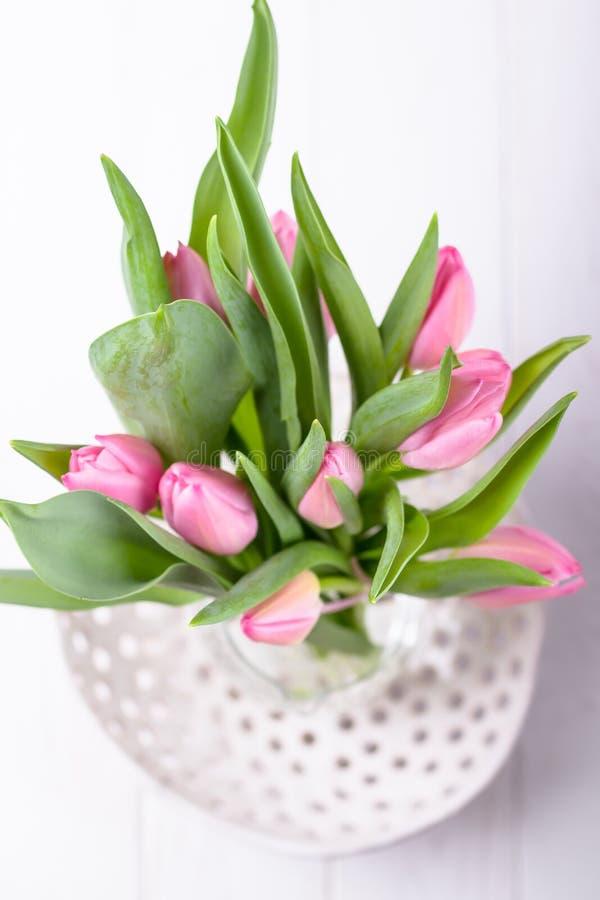 Las flores hermosas pican tulipanes en un fondo blanco Visión superior fotos de archivo