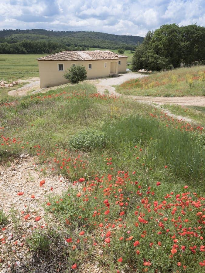 Las flores rojas de la amapola y la casa vieja de Provence en Francia del sur rural ajardinan foto de archivo