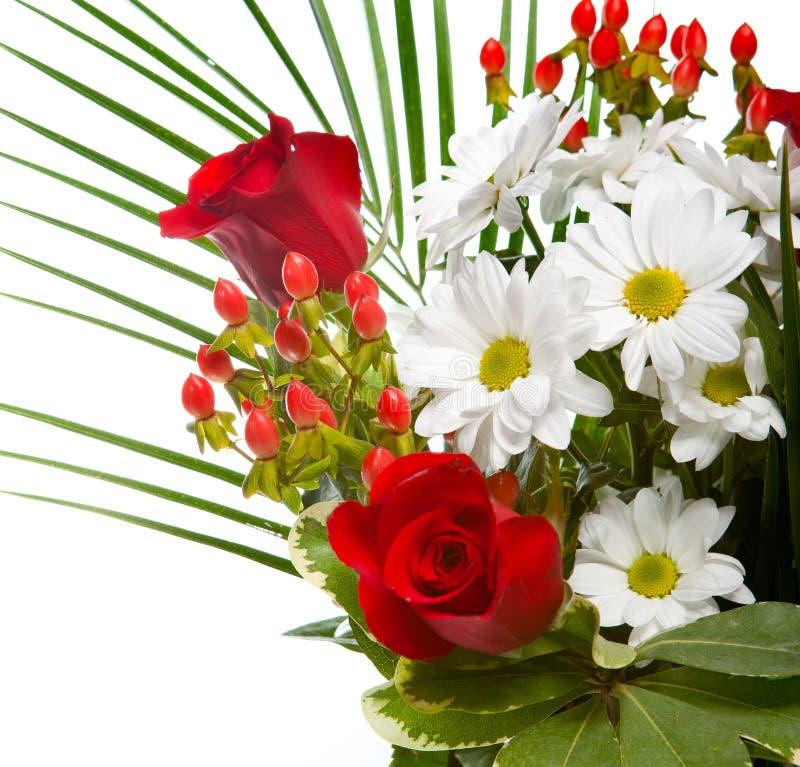 Las flores rojas y blancas brillantes y hermosas se recogen en un ramo elegante, un cierre para arriba en un fondo blanco imágenes de archivo libres de regalías