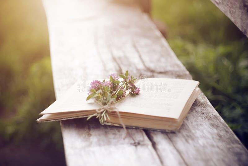 Las flores rosadas del trébol mienten así como un libro abierto en un banco de madera viejo imagen de archivo