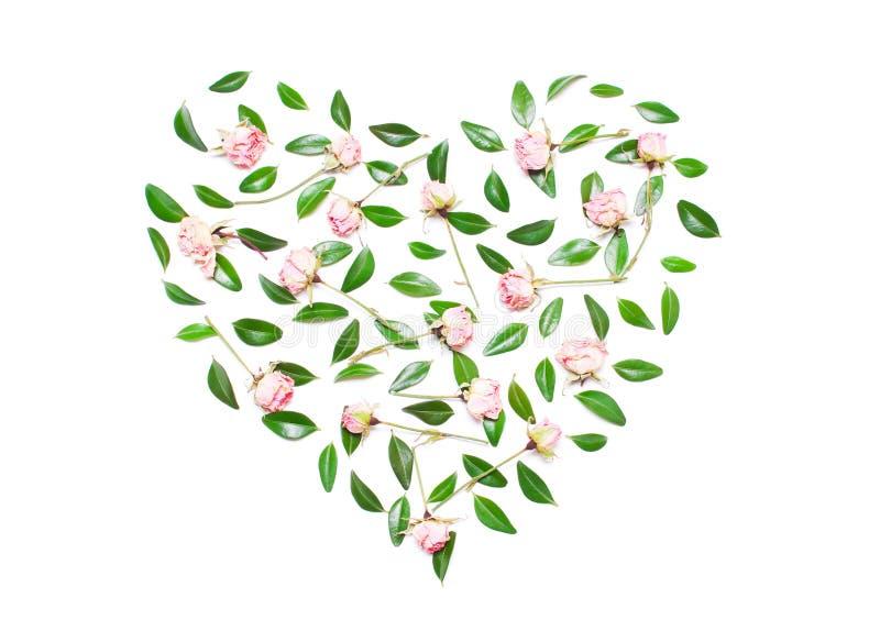 Las flores rosadas, verde dejan en la forma de un corazón en los vagos blancos foto de archivo