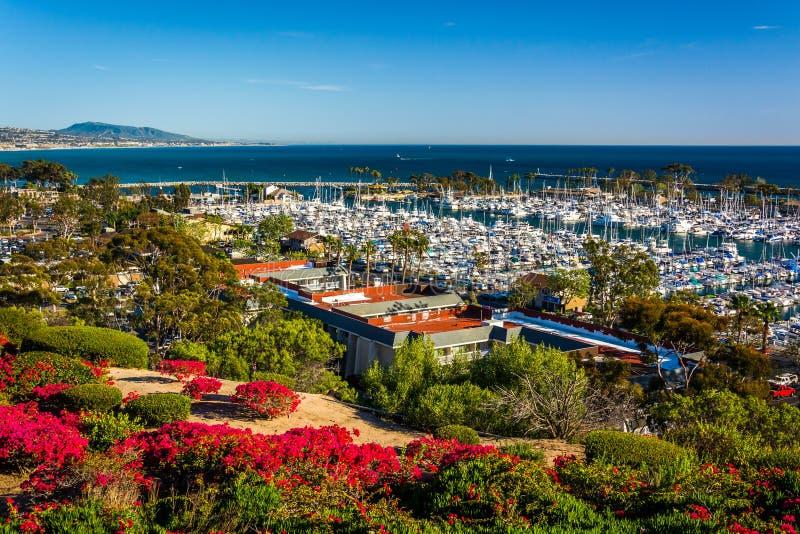 Las flores y la vista del puerto de la herencia parquean en Dana Point imagen de archivo