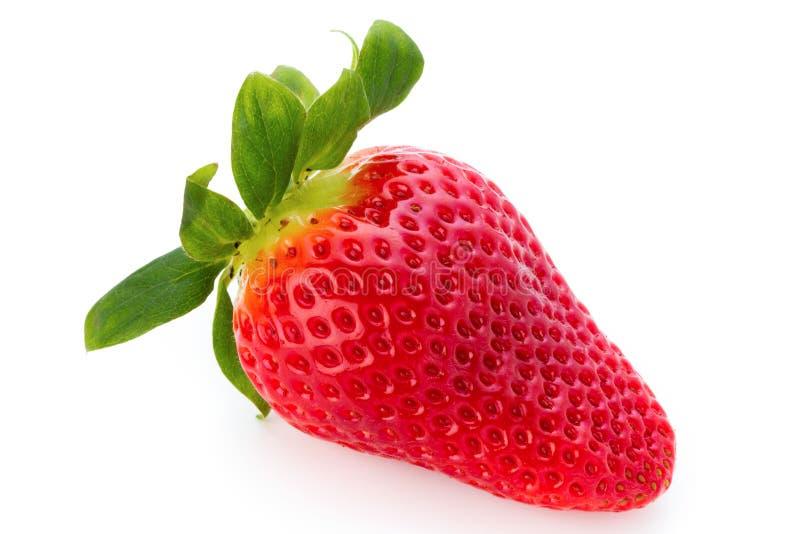Las fresas frescas se cierran para arriba en el fondo blanco fotografía de archivo libre de regalías