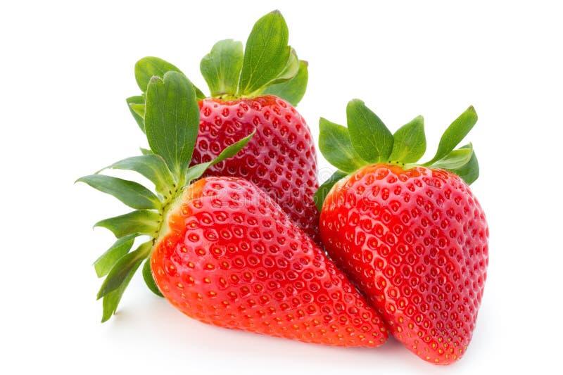 Las fresas frescas se cierran para arriba en el fondo blanco foto de archivo libre de regalías