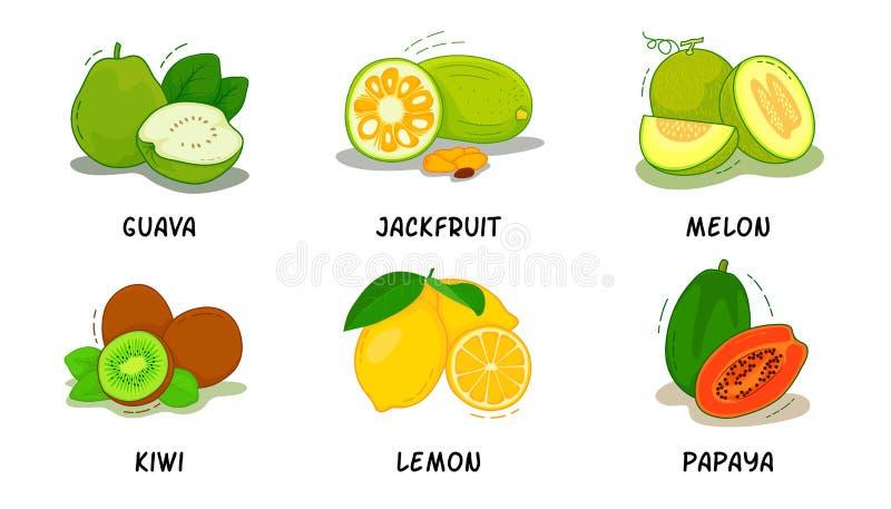 Las frutas, frutas colección, guayaba, levantan la fruta, melón, kiwi, limón, papaya imágenes de archivo libres de regalías