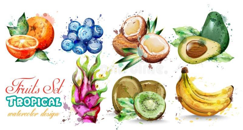 Las frutas de la acuarela fijaron vector de la colección Kiwi, plátano, composición tropical de la fruta del verano del arándano stock de ilustración