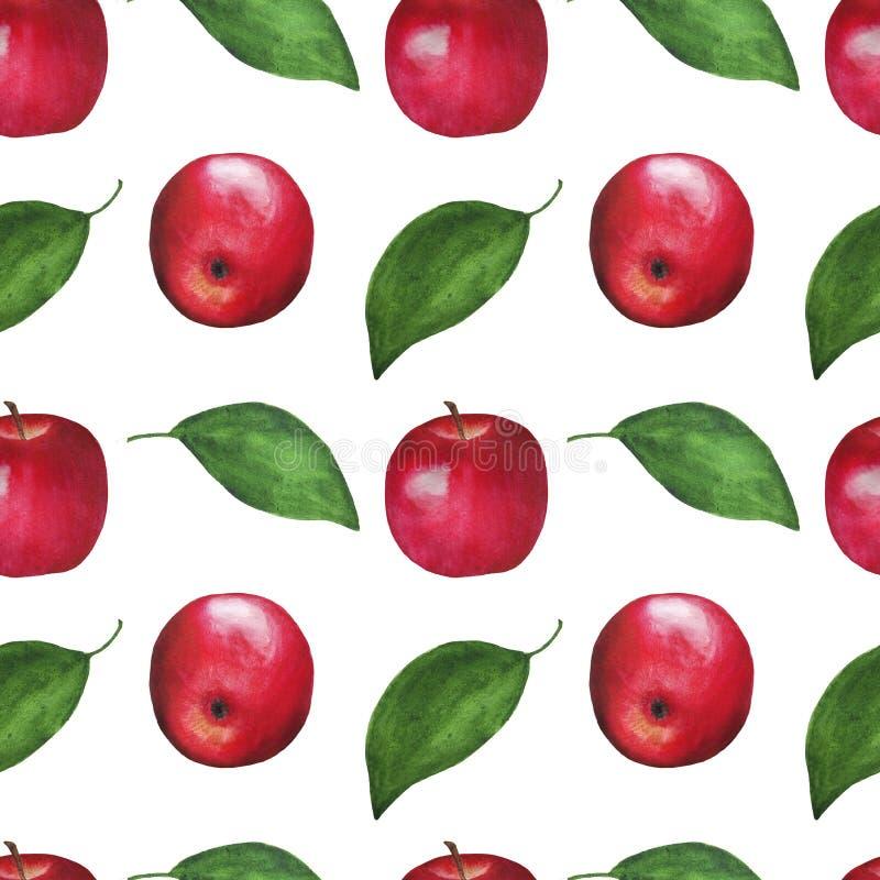 Las frutas de la acuarela de las manzanas modelan el sistema inconsútil de papel del ejemplo de Digitaces del diseño botánico de  ilustración del vector