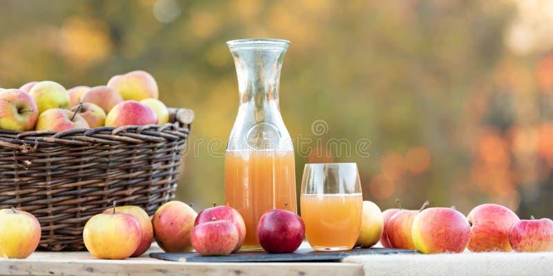 Las frutas hermosas del otoño arreglaron en una tabla Zumo de manzana fresco en vidrio y botella fotografía de archivo