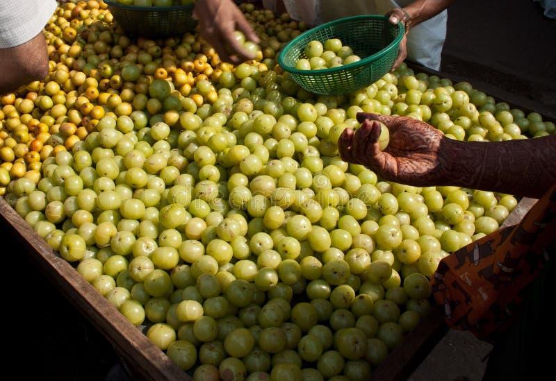 Las frutas indias indias verdes del ciruelo de Bor de la grosella espinosa y de la naranja de Amla vendieron en un carro de la ma imagen de archivo
