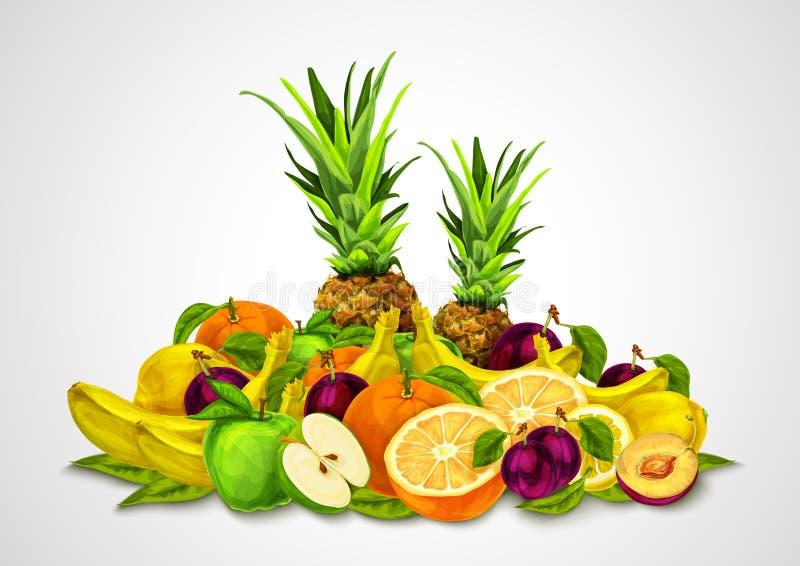 Las frutas tropicales fijaron vida inmóvil stock de ilustración