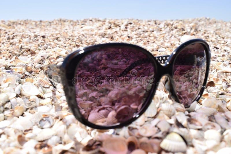 Las gafas de sol que mienten en la costa contra el mar Fondo de la playa del verano Gafas de sol y shelles imagen de archivo