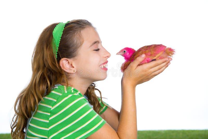 Las gallinas del criador embroman al granjero del ranchero de la muchacha con los polluelos del pollo foto de archivo libre de regalías