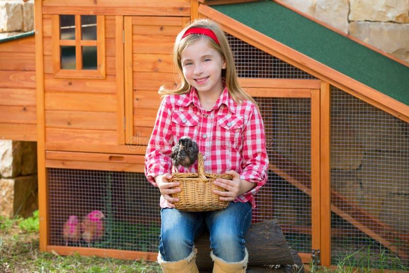 Las gallinas del criador embroman al granjero del ranchero de la muchacha con los polluelos en gallinero de pollo imagen de archivo