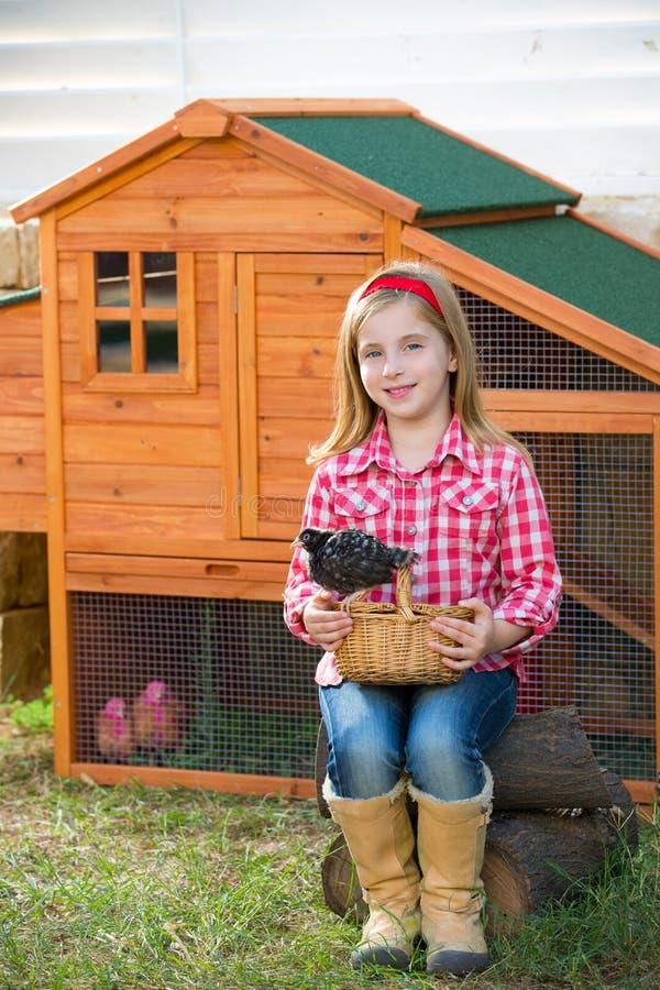 Las gallinas del criador embroman al granjero del ranchero de la muchacha con los polluelos en gallinero de pollo imagenes de archivo
