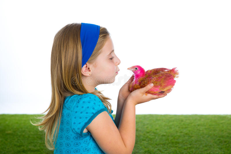 Las gallinas del criador embroman al granjero del ranchero de la muchacha que besa un polluelo del pollo fotos de archivo