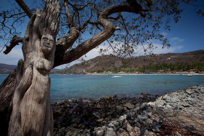 Las Gatas de Playa imagens de stock royalty free