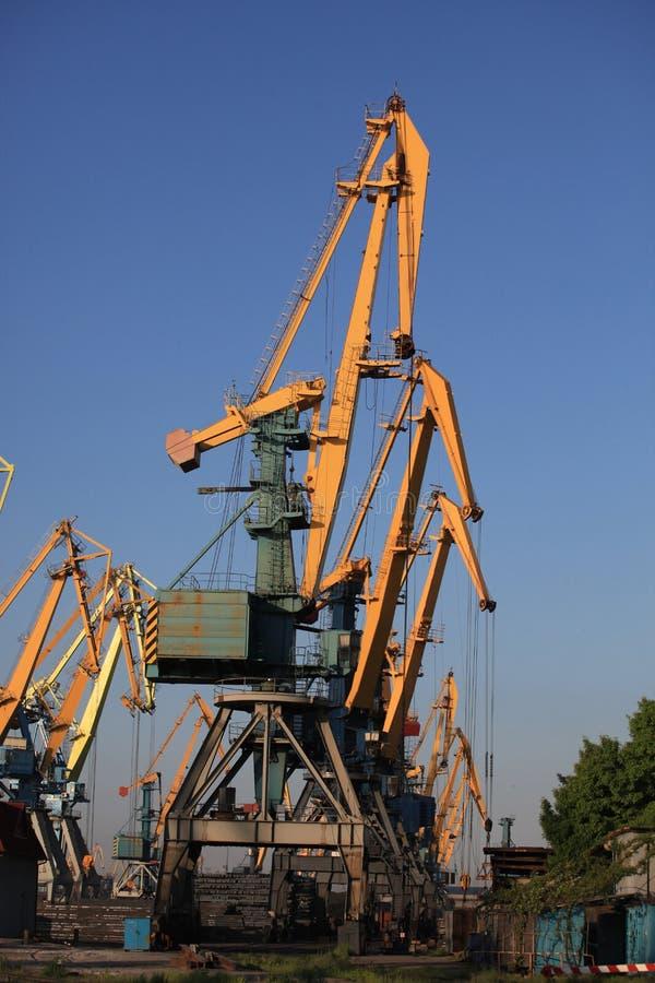 Las grúas están en fila en el puerto marítimo del mar de Azov fotografía de archivo libre de regalías