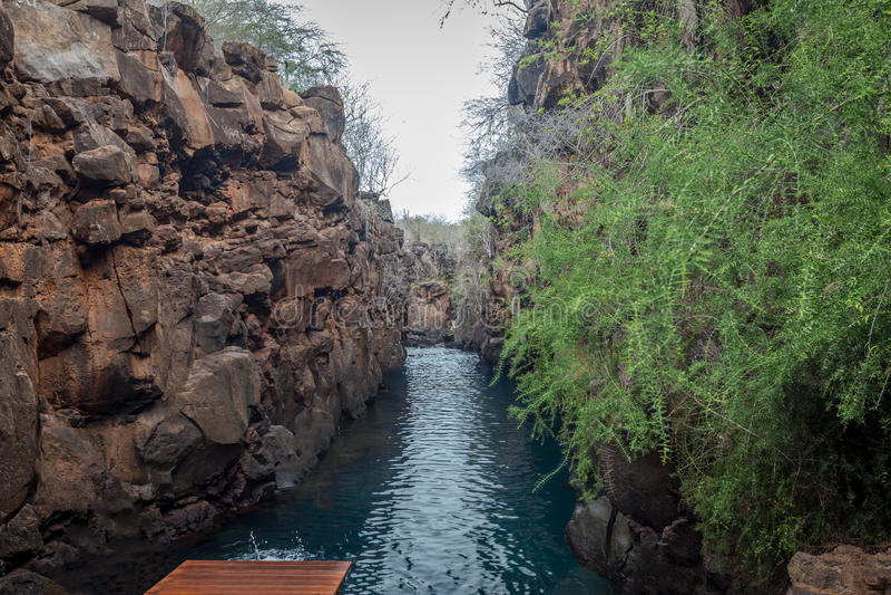 Las Grietas, Santa Cruz Island, de Eilanden van de Galapagos, Ecuador stock foto