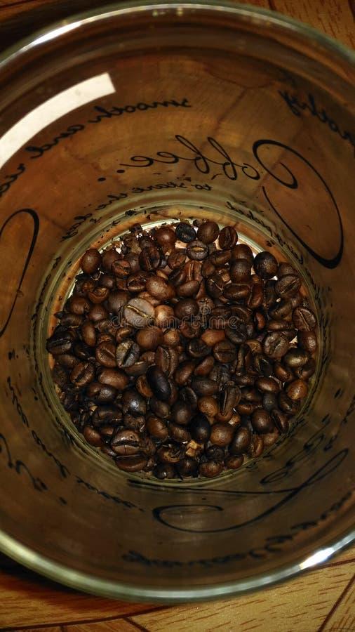 Las habas del café indonesio fotografía de archivo libre de regalías