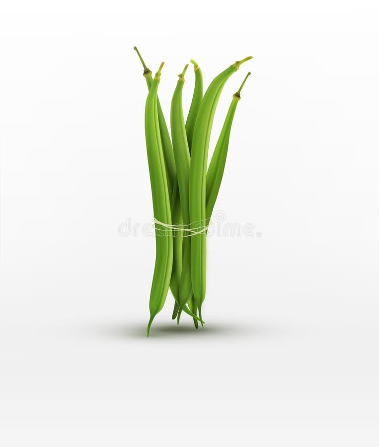 Las habas verdes del vector limitan la gavilla aislada en el fondo blanco stock de ilustración