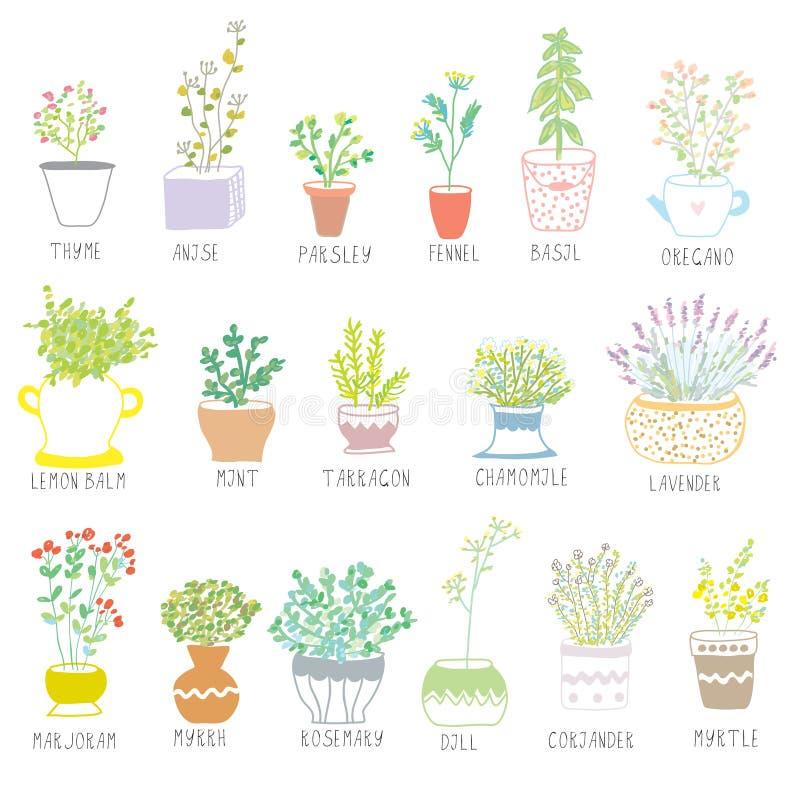 Las hierbas y las especias fijaron en potes con las flores ilustración del vector