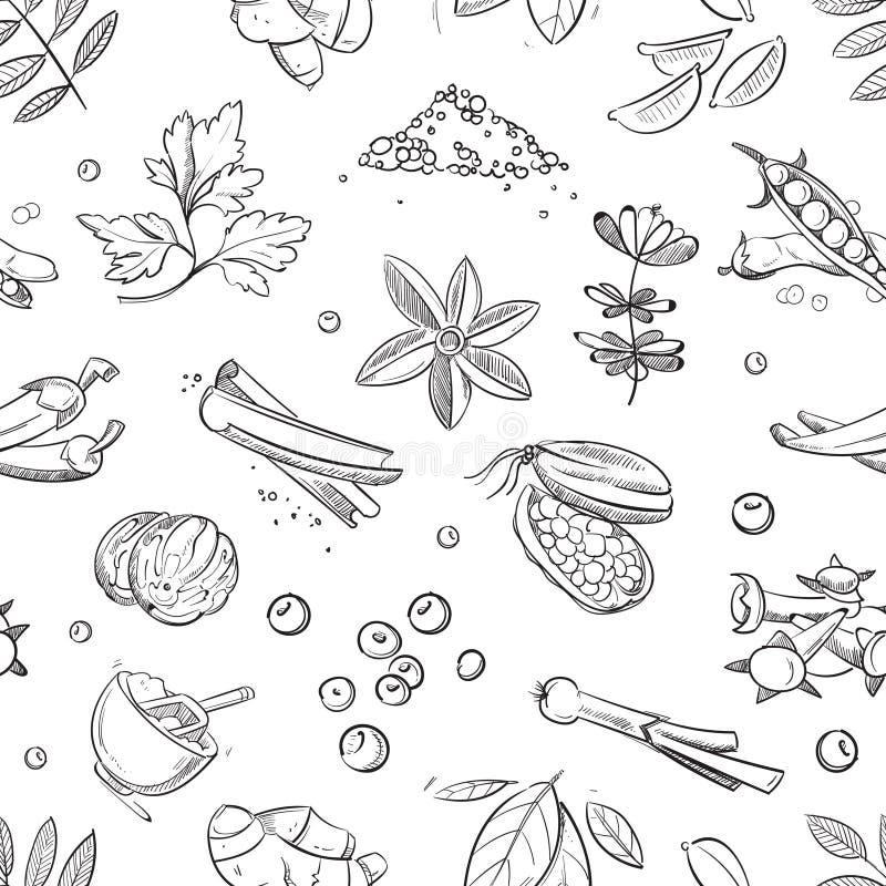 Las hierbas y las especias frescas garabatean el modelo inconsútil dibujado mano del vector ilustración del vector
