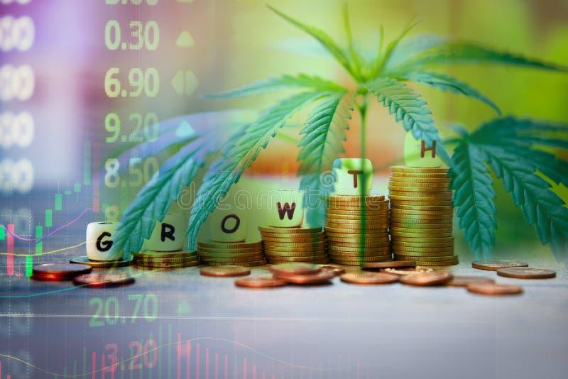 Las hojas de la marijuana del negocio del cáñamo y la pila de precio de mercado común del éxito de las monedas encima de cartas d imagen de archivo