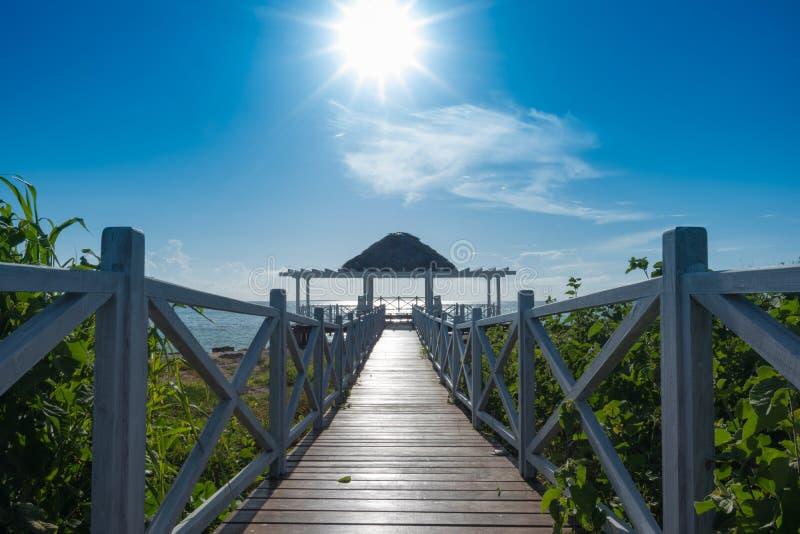 Las hojas de palma abrigan en el paraíso del Caribe, Cayo Guillermo, Cuba imagenes de archivo