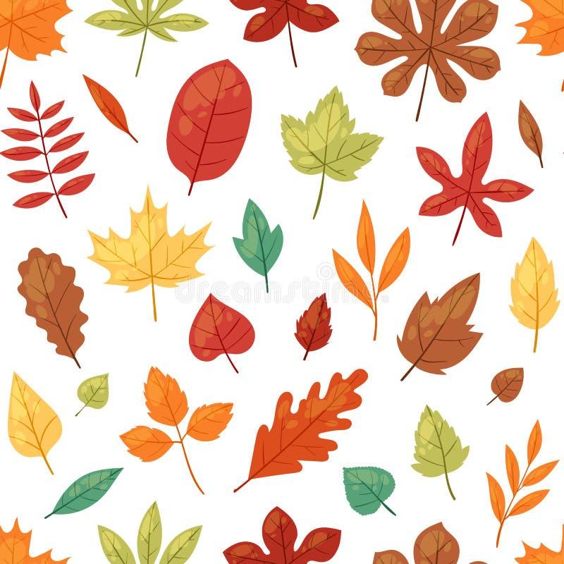 Las hojas otoñales del vector de la hoja del otoño que caían de árboles caidos hojearon ejemplo del roble y del follaje frondoso  ilustración del vector