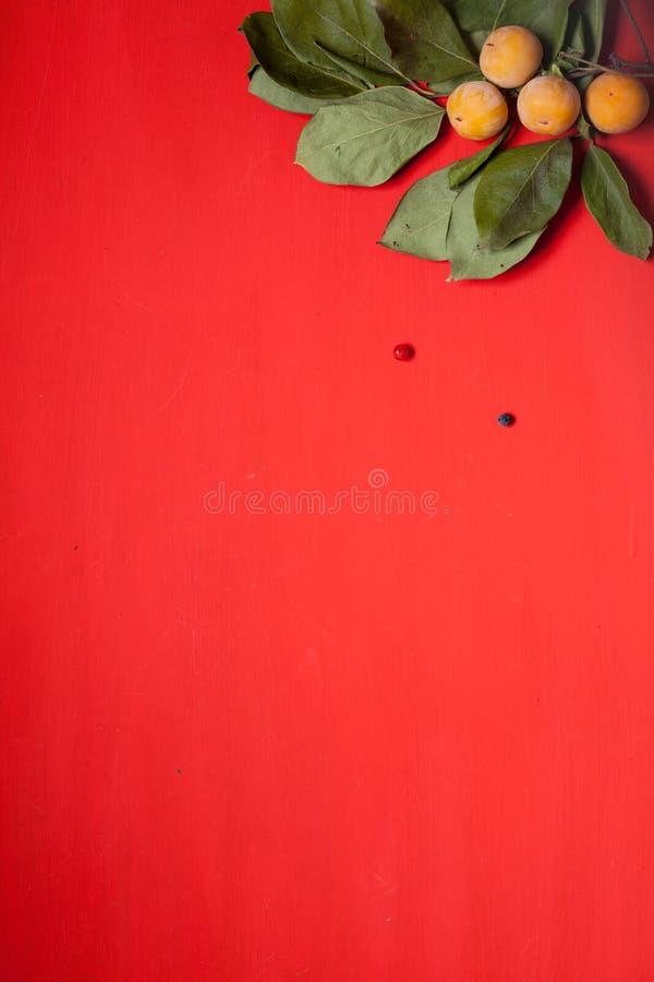 Las hojas rojas y amarillas del otoño dan fruto las nueces caen fondo foto de archivo