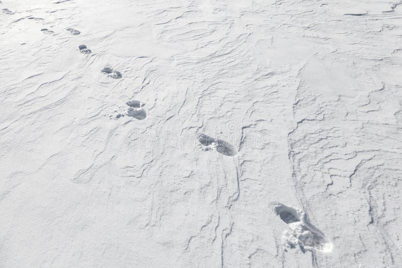 Las huellas del hombre inminente en nieve fotos de archivo
