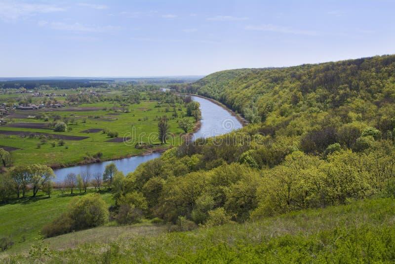 Las i rzeka w wiośnie fartuch Aidar rzeka w Ukraina fotografia royalty free
