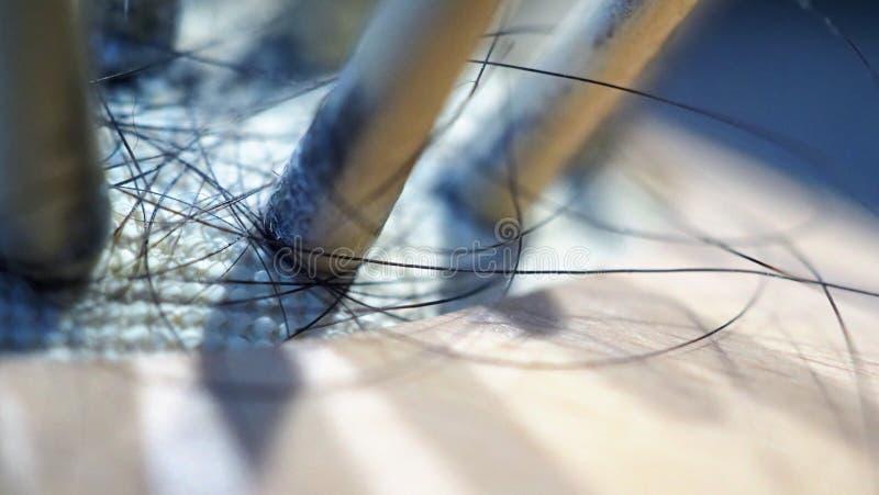 Las imágenes macras de la caída del pelo sticked en el cepillo de madera fotos de archivo libres de regalías