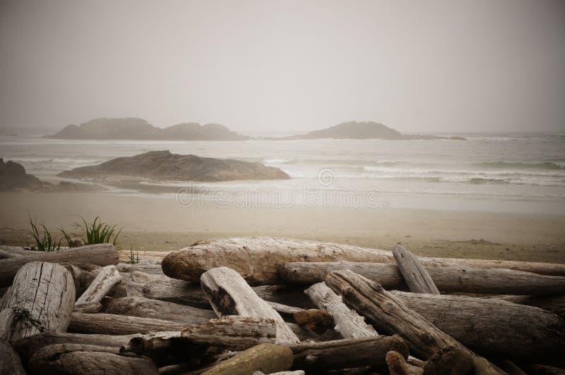 Las islas se dispersan el horizonte en una playa madera de deriva-alineada en una mañana brumosa cerca de Tofino, isla de Vancouv imagenes de archivo