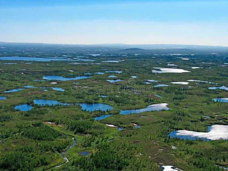 las krajobrazowa tundra zdjęcie royalty free