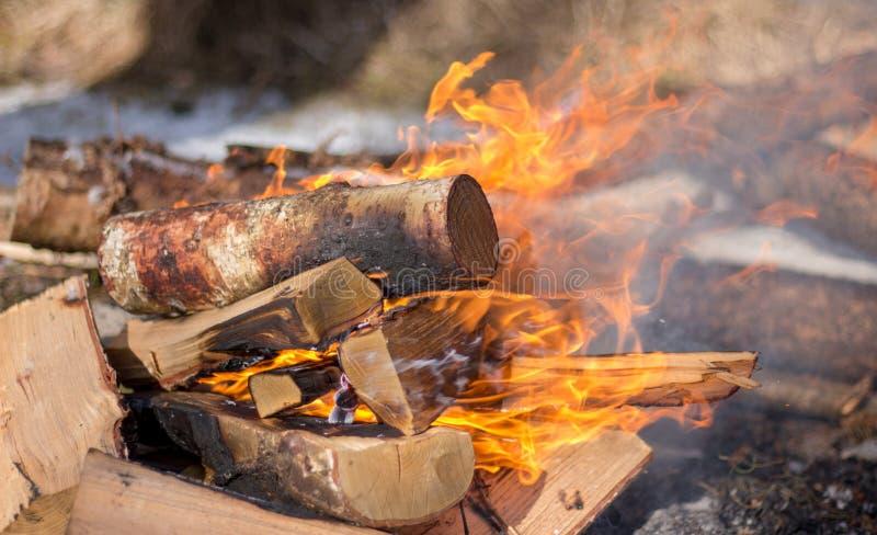 Las llamas ardientes de la leña se cierran para arriba fotografía de archivo