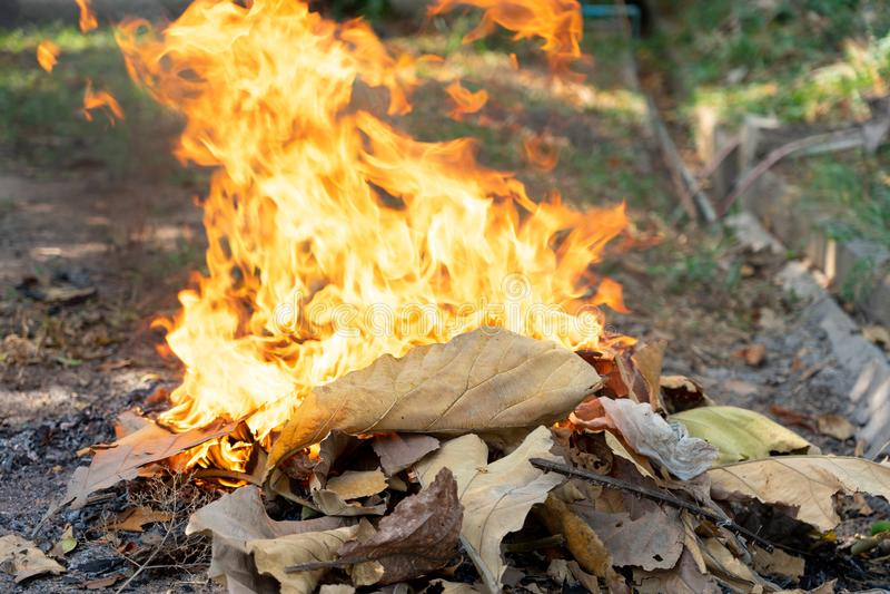 Las llamas de la basura ardiente, las hojas secas causan el humo, polvo, causas de la contaminación atmosférica Conceptos de toxi foto de archivo