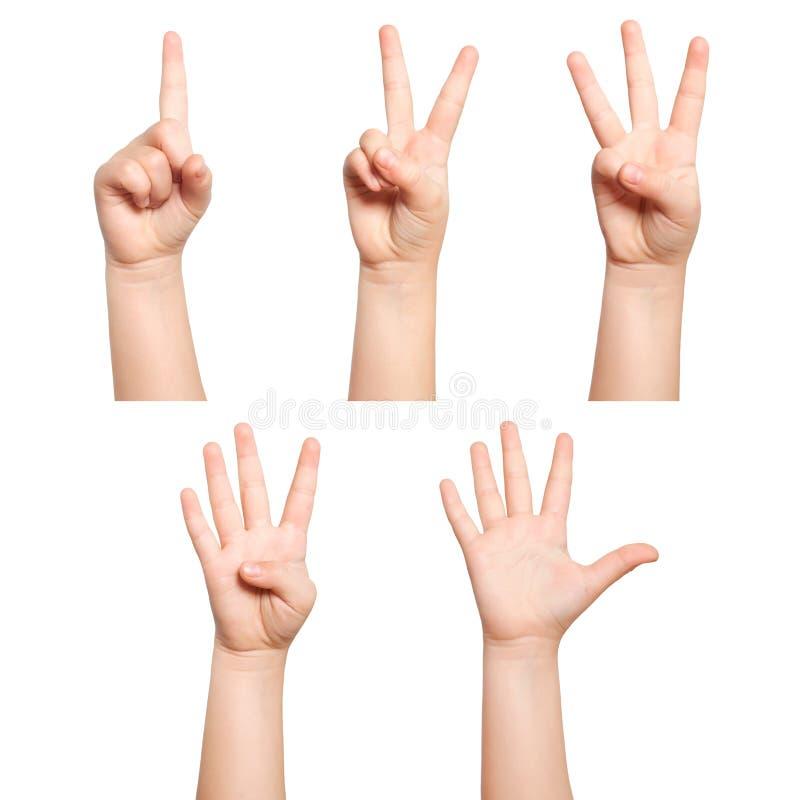 Las manos aisladas de los niños muestran a número uno dos tres cuatro cinco fotografía de archivo libre de regalías