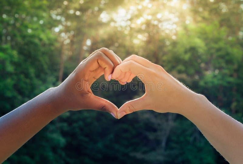Las manos blancos y negros en corazón forman, concepto interracial de la amistad fotos de archivo libres de regalías