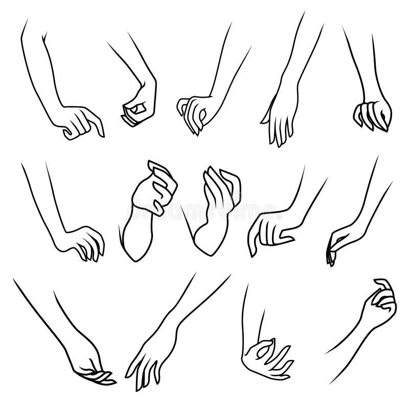 Las manos de la mujer aisladas en el fondo blanco stock de ilustración