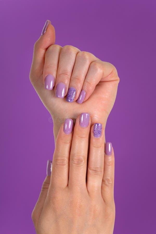 Las manos de la mujer con los clavos de un color de la lila pulen el gel aislado en fondo púrpura en el estudio imágenes de archivo libres de regalías