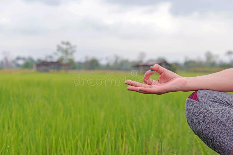 Las manos de la mujer que meditan en una yoga presentan en el campo verde imagenes de archivo