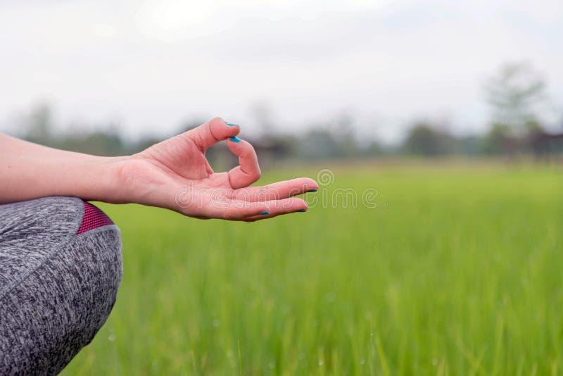 Las manos de la mujer que meditan en una yoga presentan en el campo verde imagen de archivo libre de regalías