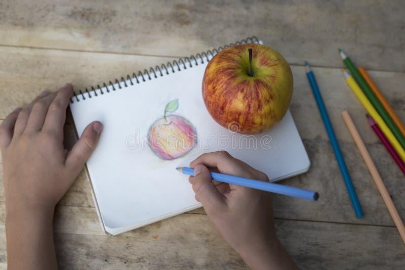 Las manos de los niños dibujan una manzana con los lápices coloreados Visión superior imagenes de archivo