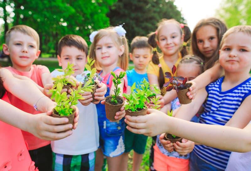 Las manos de los niños que plantan el árbol joven en suelo negro junto como el concepto del mundo de rescate imágenes de archivo libres de regalías
