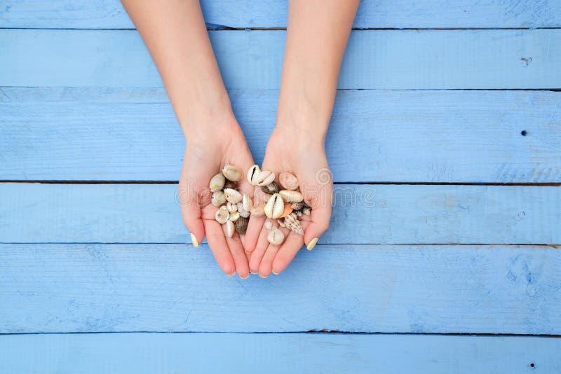 Las manos de las mujeres con una manicura hermosa con un modelo del verano y cáscaras en un fondo azul La visi?n desde la tapa fotografía de archivo libre de regalías