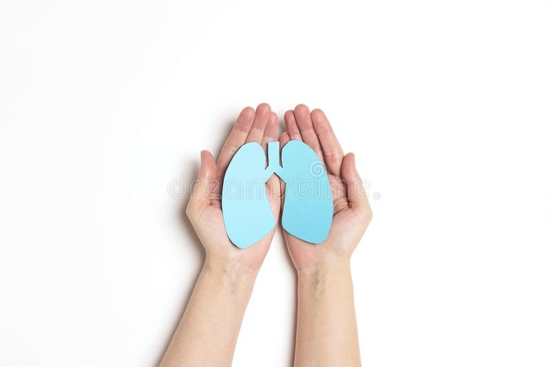 Las manos de las mujeres llevan a cabo un símbolo de los pulmones en el fondo blanco Día de tuberculosis de mundo fotos de archivo