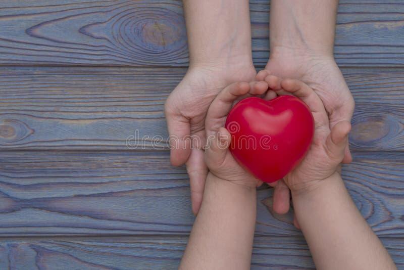 Las manos de un adulto y de un niño se llevan a cabo en el corazón rojo, seguro médico fotos de archivo libres de regalías