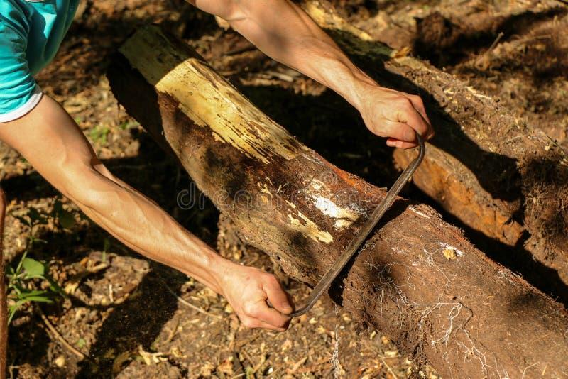 Las manos de un carpintero planearon la madera, lugar de trabajo fotografía de archivo