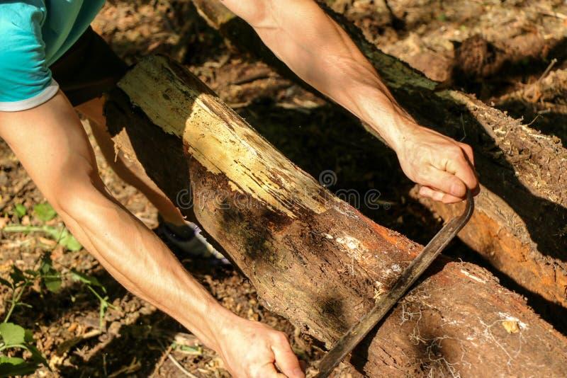 Las manos de un carpintero planearon la madera, lugar de trabajo fotos de archivo libres de regalías